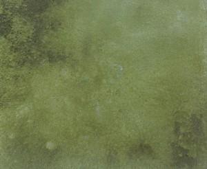 Bomanite Chemical Stain