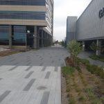 Bomanite Colored Sandscape Texture Plaza
